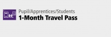 Pupil 1-Month Travel Pass